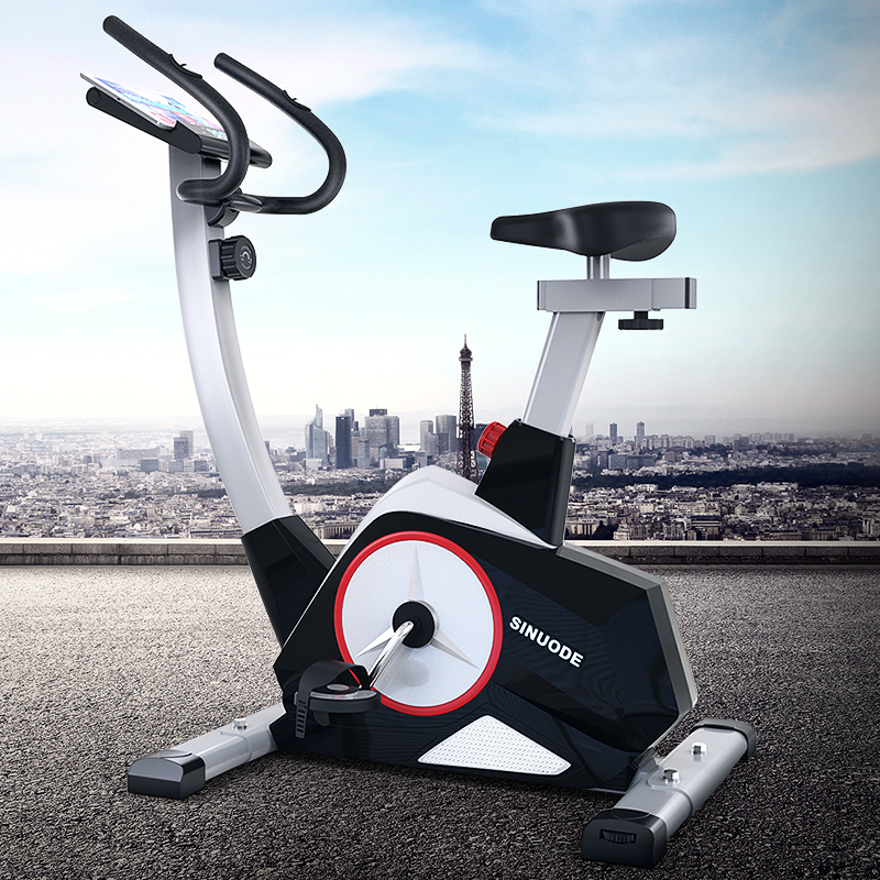 美国斯诺德动感单车家用智能健身车磁控超静音室内自行车运动健身器材 黑色 动感大单车